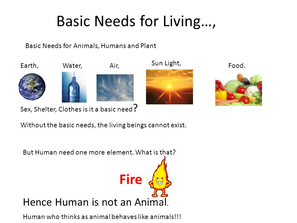 Sex, Shelter, Clothes is it a basic need ? Food.Water,Air,Earth, Sun Light, Fire Basic Needs for Living…, Basic Needs for Animals, Humans and Plant Wi