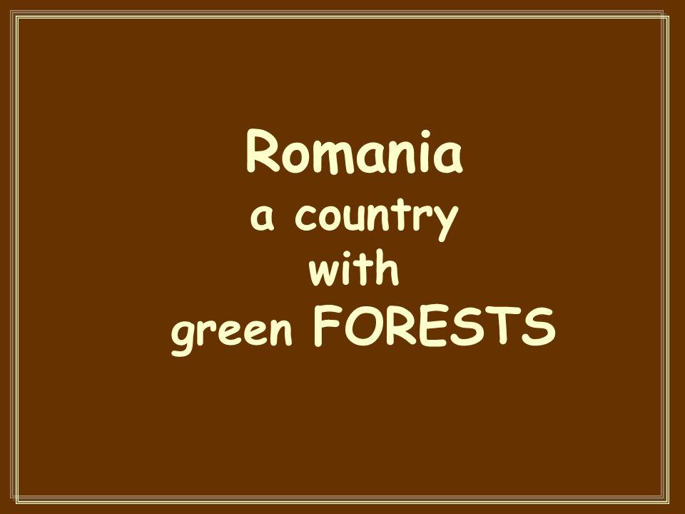 Gura Portitei in the Danube Delta, a wonderful place in Romania