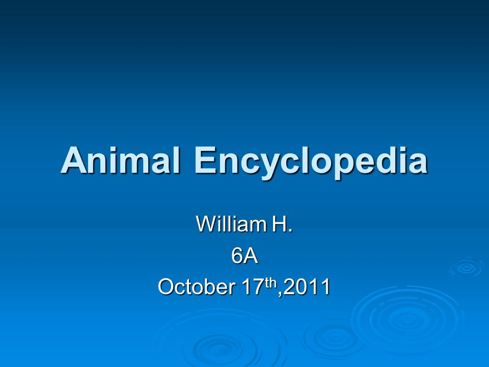 Animal Encyclopedia William H. 6A October 17 th,2011