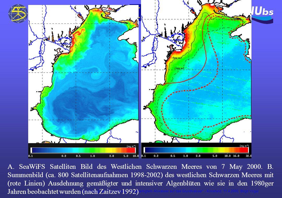 Auswirkung der Versickerung von gereinigtem Abwasser auf das Grundwasser - Konstanz, 11.4.2000; Birgit Vogel AB A.