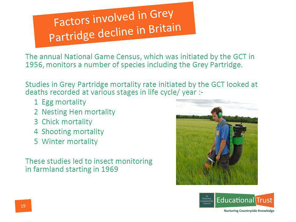 19 Factors involved in Grey Partridge decline in Britain The annual National Game Census, which was initiated by the GCT in 1956, monitors a number of species including the Grey Partridge.