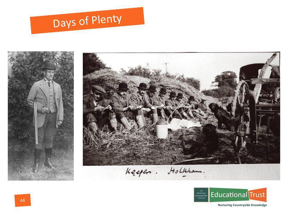 44 Days of Plenty