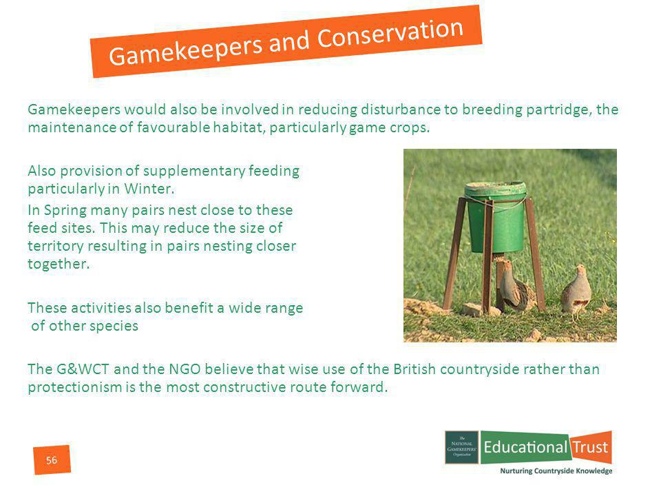 56 Gamekeepers and Conservation Gamekeepers would also be involved in reducing disturbance to breeding partridge, the maintenance of favourable habitat, particularly game crops.