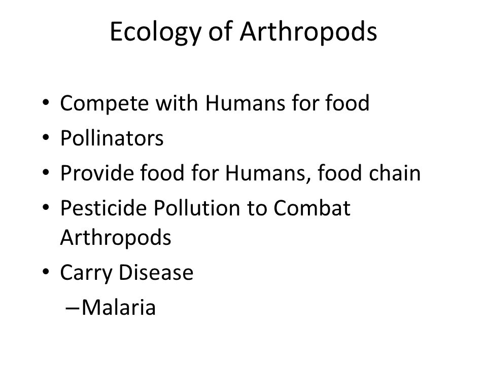 Ecology of Arthropods Compete with Humans for food Pollinators Provide food for Humans, food chain Pesticide Pollution to Combat Arthropods Carry Disease – Malaria
