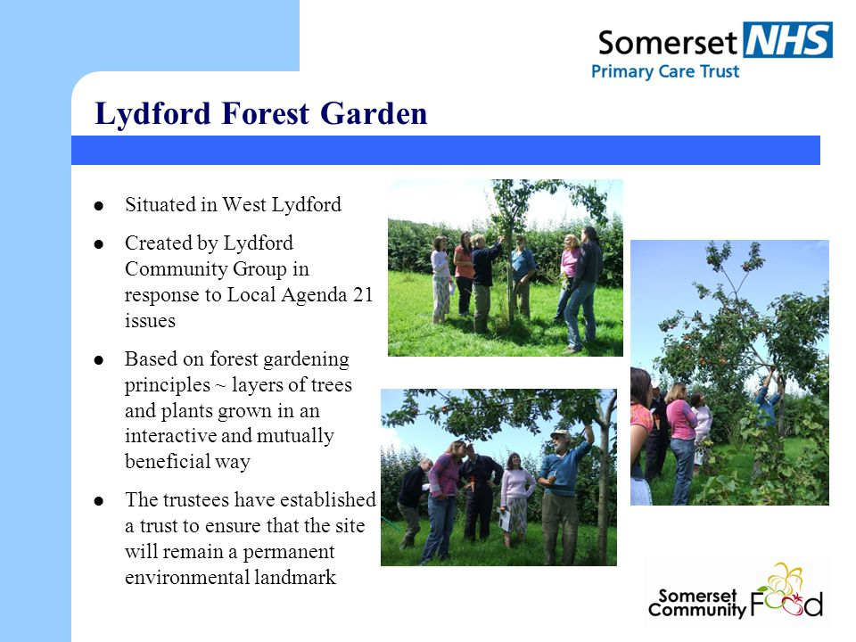 Lydford Forest Garden Situated in West Lydford Created by Lydford Community Group in response to Local Agenda 21 issues Based on forest gardening principles ~ layers of trees and plants grown in an interactive and mutually beneficial way The trustees have established a trust to ensure that the site will remain a permanent environmental landmark