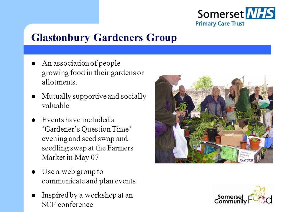 Glastonbury Gardeners Group An association of people growing food in their gardens or allotments.