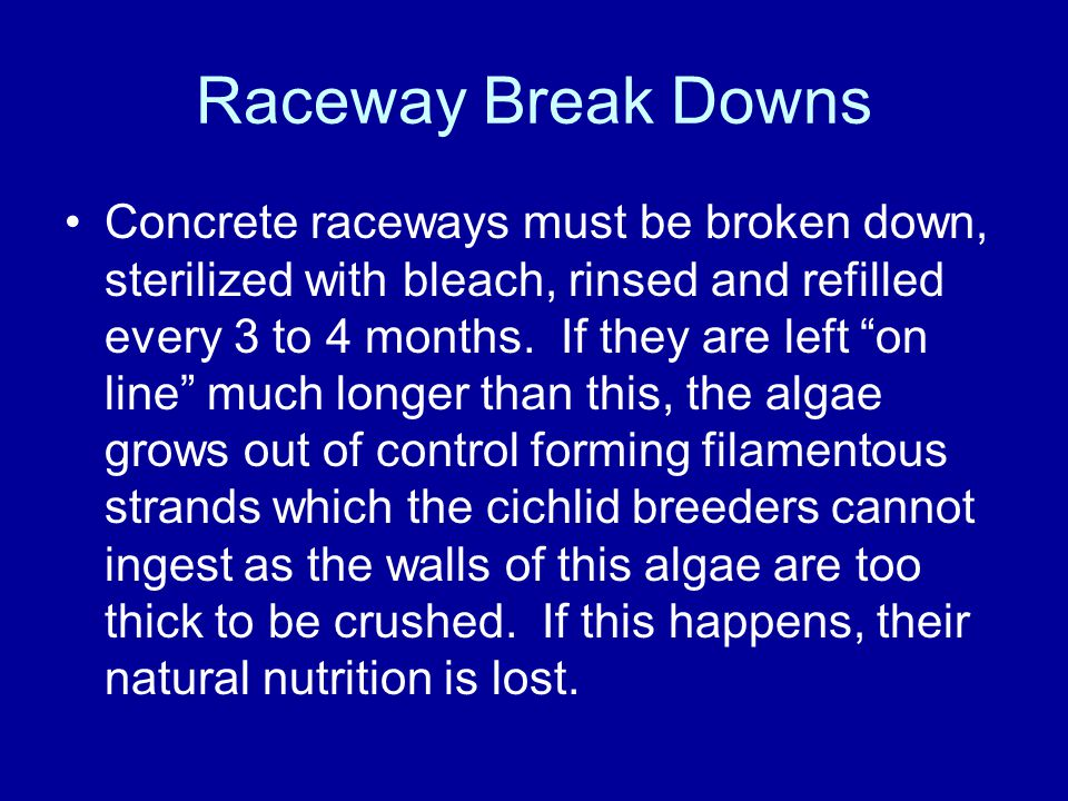 Raceway Break Downs Concrete raceways must be broken down, sterilized with bleach, rinsed and refilled every 3 to 4 months.