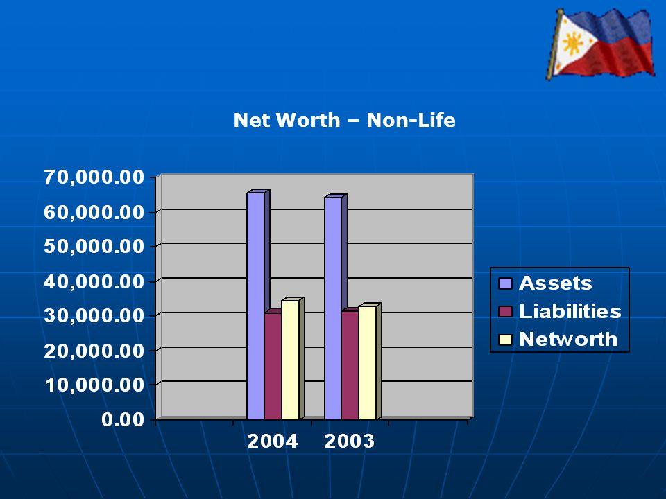 Net Worth – Non-Life