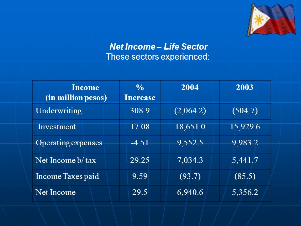 Net Income – Life Sector These sectors experienced: Income (in million pesos) % Increase 20042003 Underwriting308.9(2,064.2)(504.7) Investment17.0818,