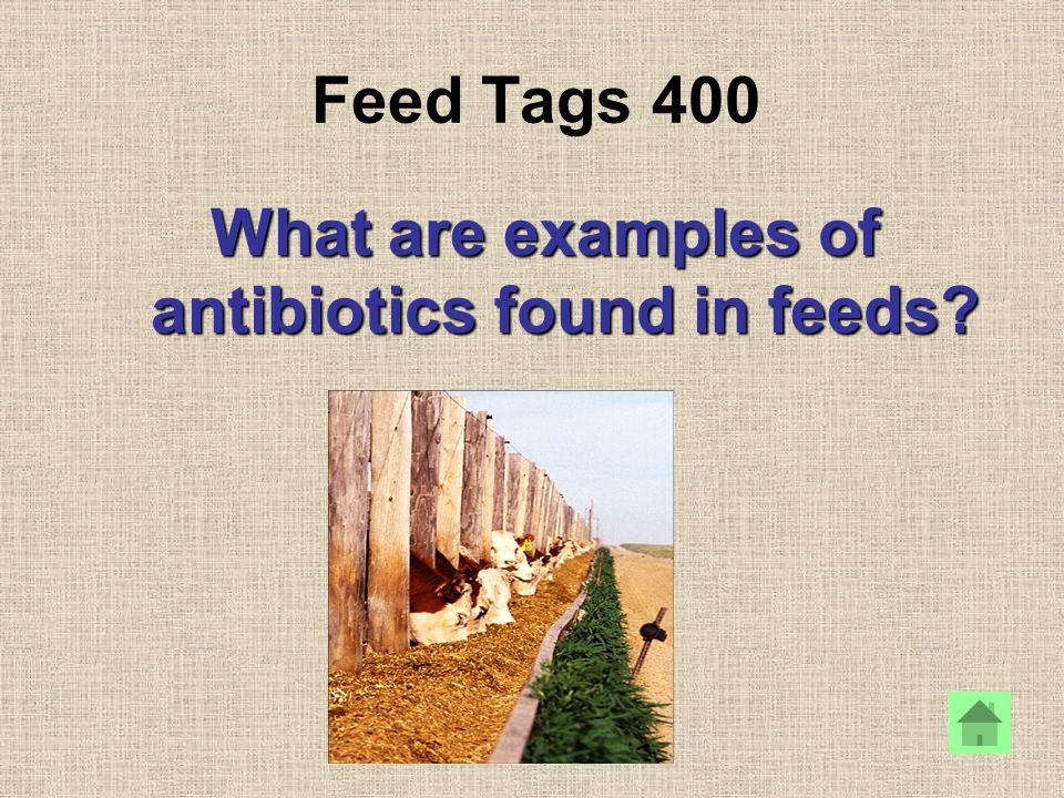 Feed Tags 400 What are examples of antibiotics found in feeds?