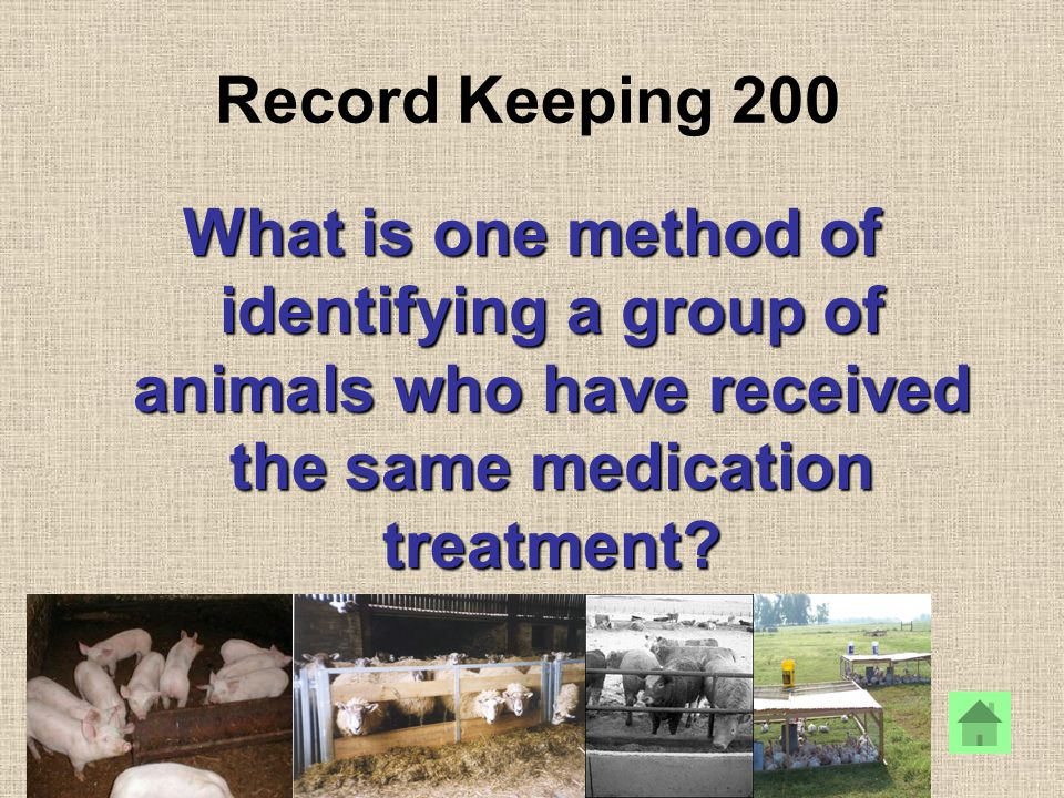 Record Keeping 200 What is one method of identifying a group of animals who have received the same medication treatment?