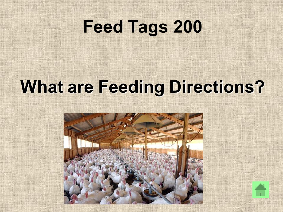 Feed Tags 200 What are Feeding Directions?