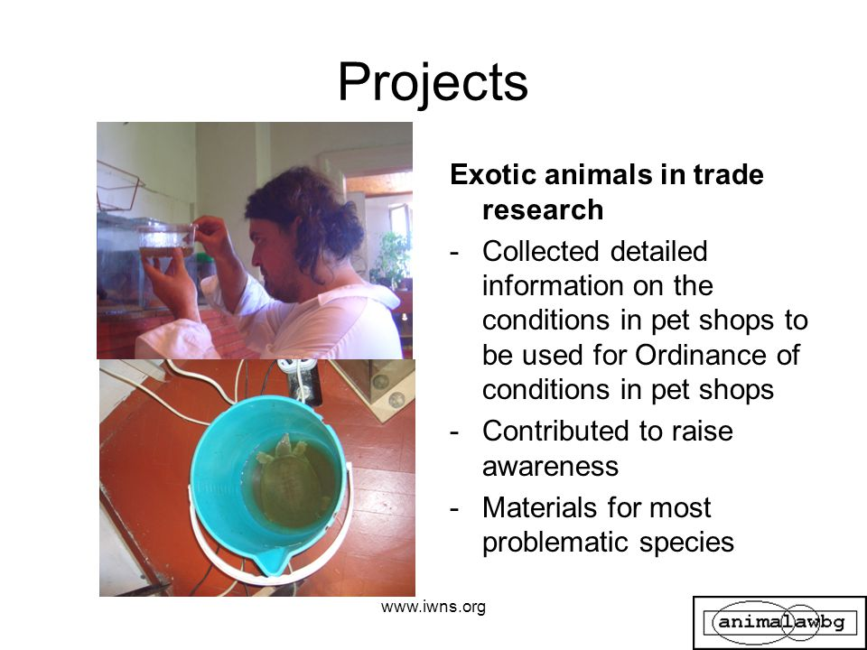 Projects Exotic animals in trade research -Collected detailed information on the conditions in pet shops to be used for Ordinance of conditions in pet shops -Contributed to raise awareness -Materials for most problematic species