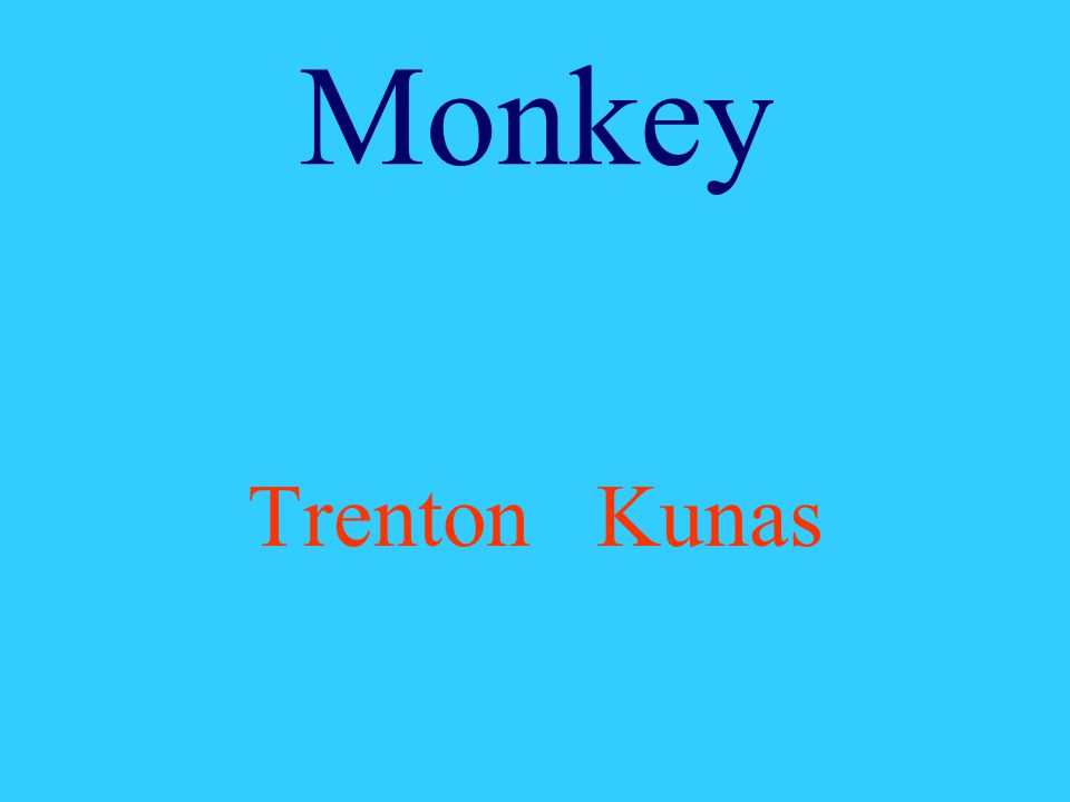 Monkey Trenton Kunas