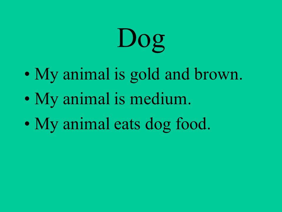 Dog My animal is gold and brown. My animal is medium. My animal eats dog food.