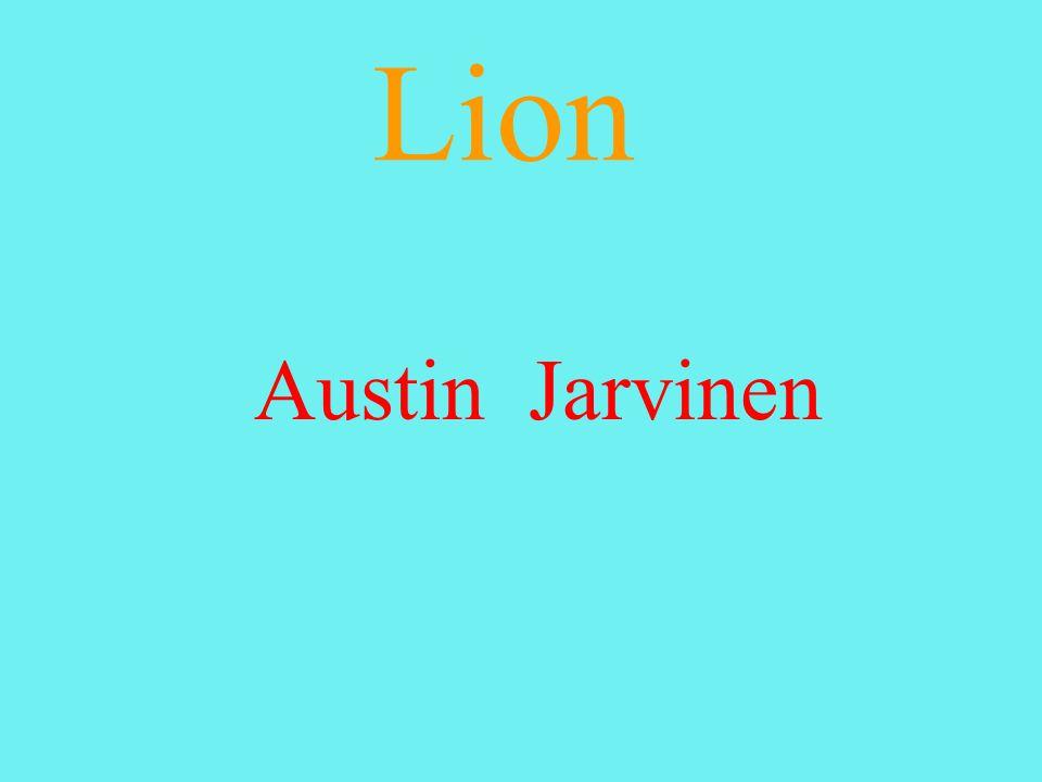 Lion Austin Jarvinen