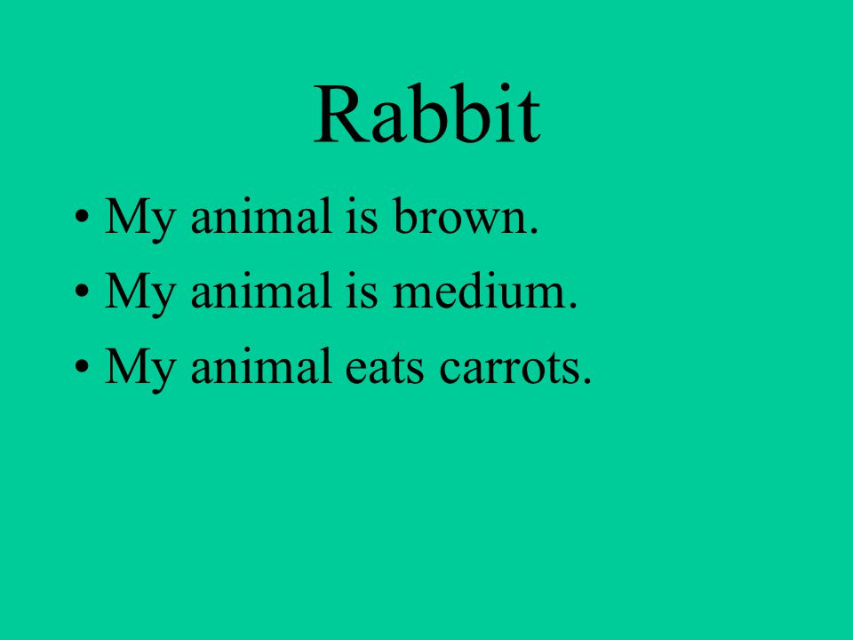 Rabbit My animal is brown. My animal is medium. My animal eats carrots.