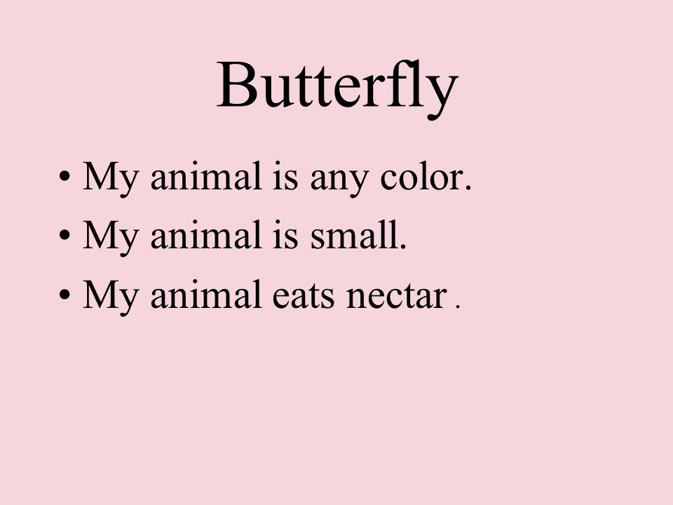 Butterfly My animal is any color. My animal is small. My animal eats nectar.