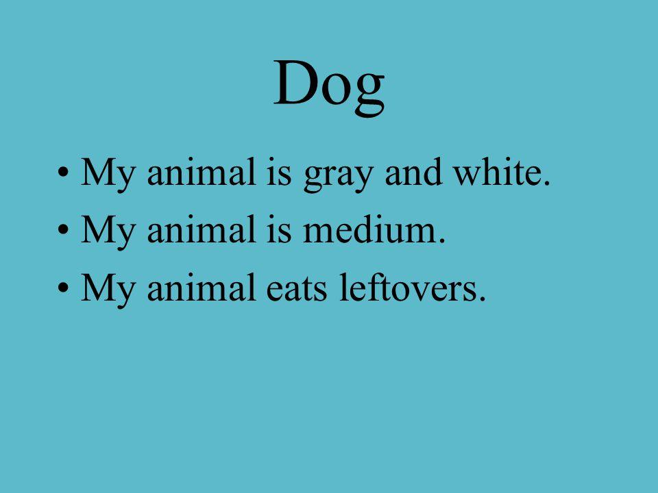 Dog My animal is gray and white. My animal is medium. My animal eats leftovers.