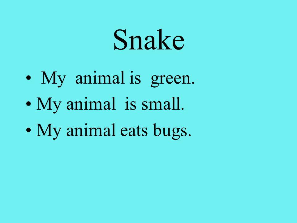 Snake My animal is green. My animal is small. My animal eats bugs.