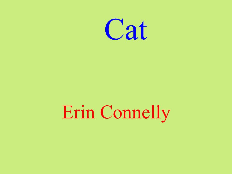 Cat Erin Connelly