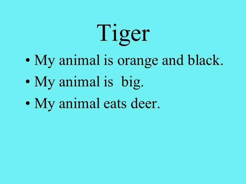 Tiger My animal is orange and black. My animal is big. My animal eats deer.