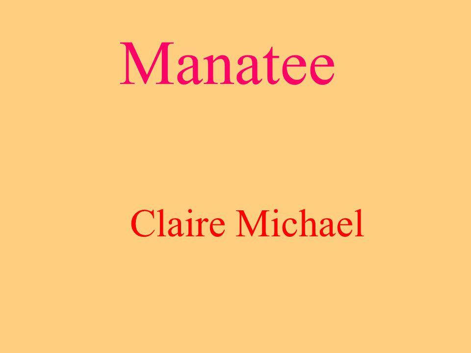 Manatee Claire Michael