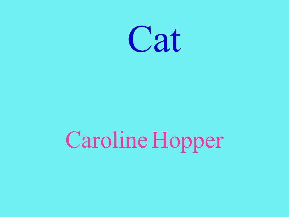 Cat Caroline Hopper