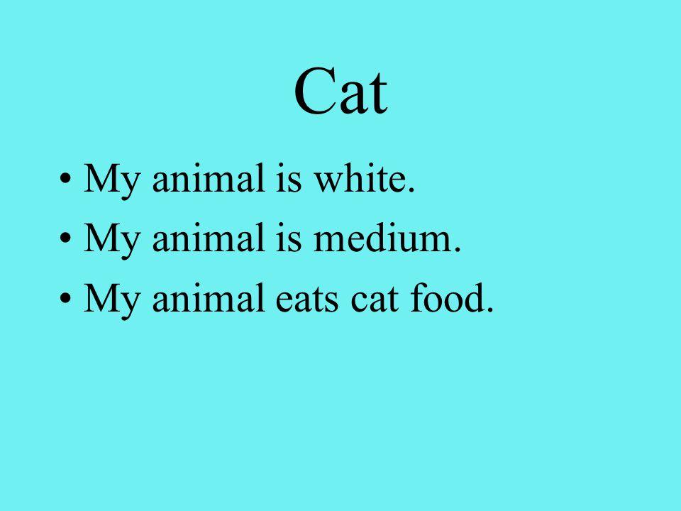 Cat My animal is white. My animal is medium. My animal eats cat food.