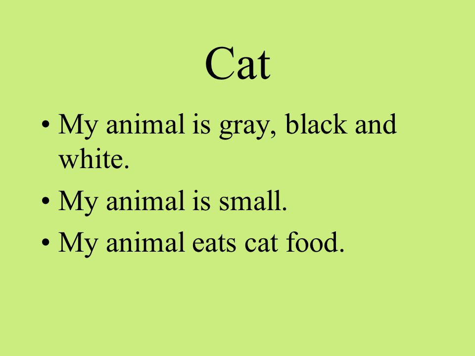 Cat My animal is gray, black and white. My animal is small. My animal eats cat food.