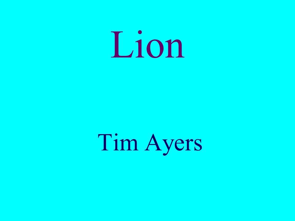 Lion Tim Ayers