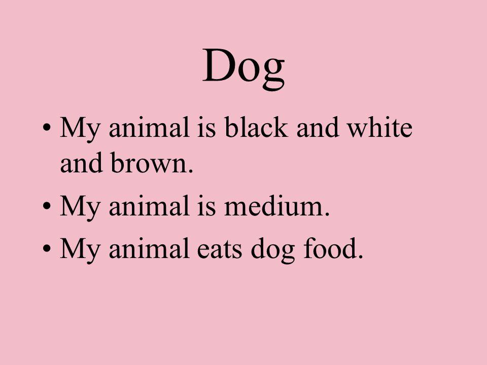Dog My animal is black and white and brown. My animal is medium. My animal eats dog food.