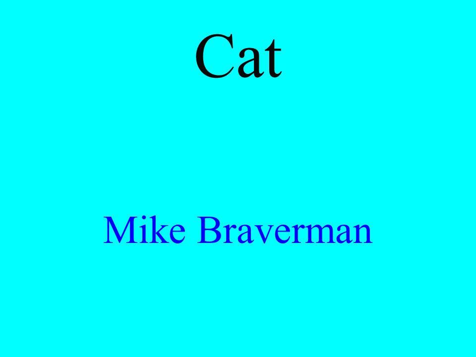 Cat Mike Braverman