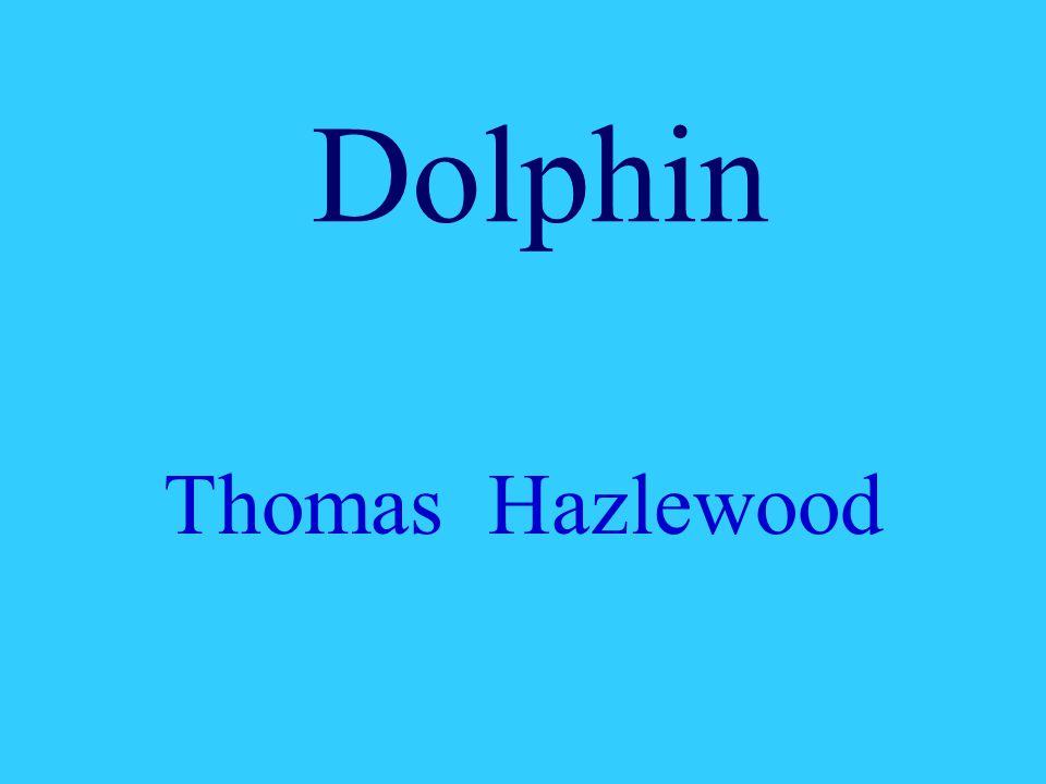 Dolphin Thomas Hazlewood