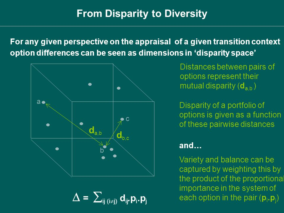 Distances between pairs of options represent their mutual disparity (d a,b ) Disparity of a portfolio of options is given as a function of these pairw