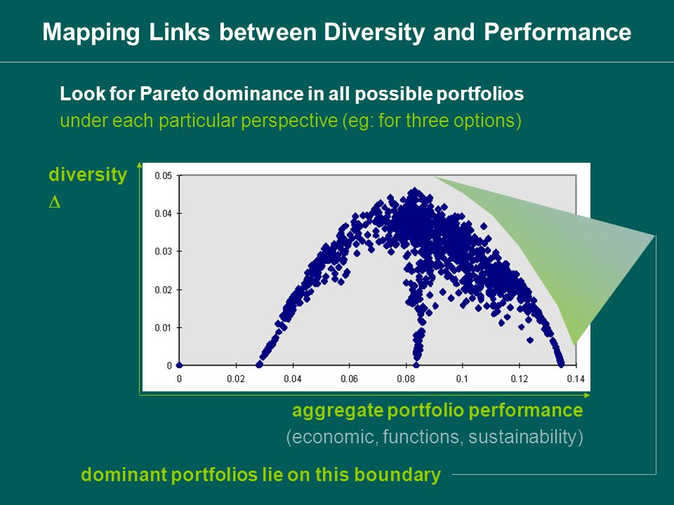 Look for Pareto dominance in all possible portfolios under each particular perspective (eg: for three options) diversity aggregate portfolio performan