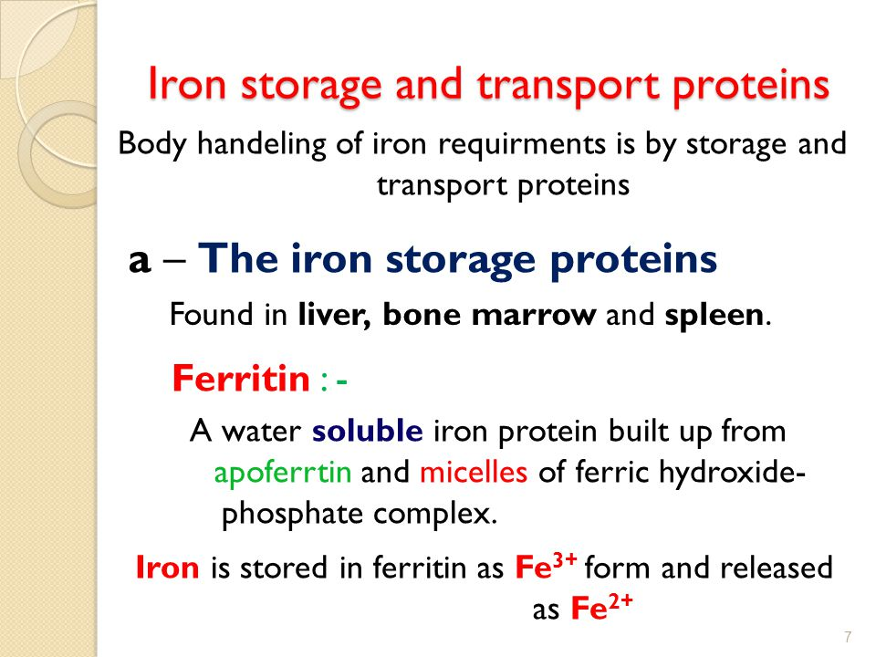 Iron storage and transport proteins Body handeling of iron requirments is by storage and transport proteins a – The iron storage proteins Found in liv