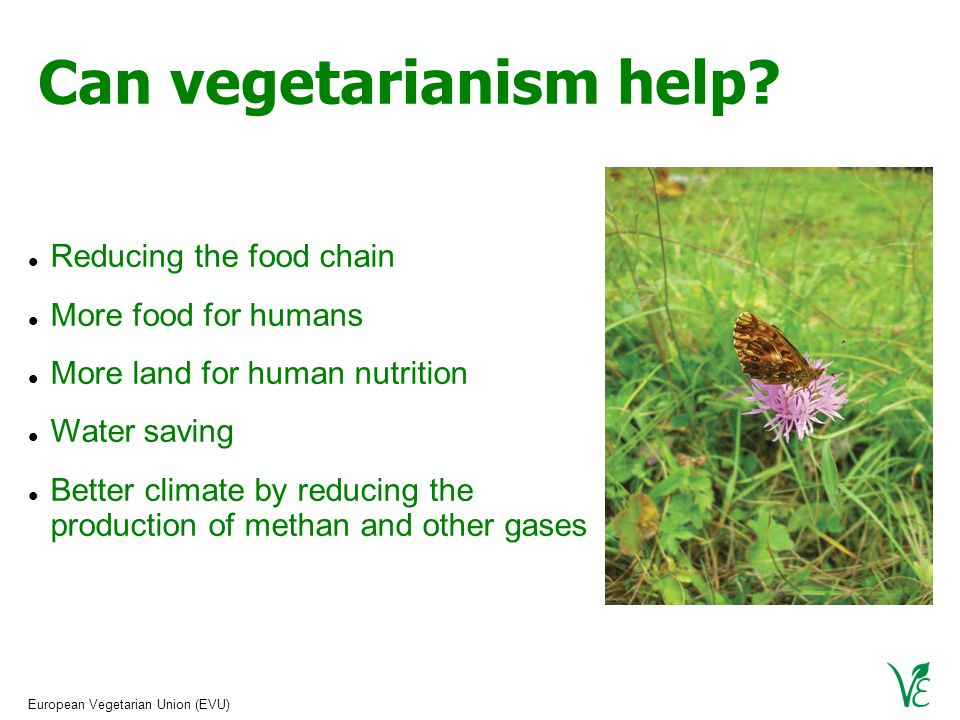 European Vegetarian Union (EVU) Can vegetarianism help.