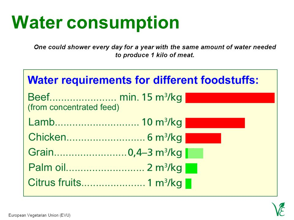 European Vegetarian Union (EVU) Water consumption One could shower every day for a year with the same amount of water needed to produce 1 kilo of meat.