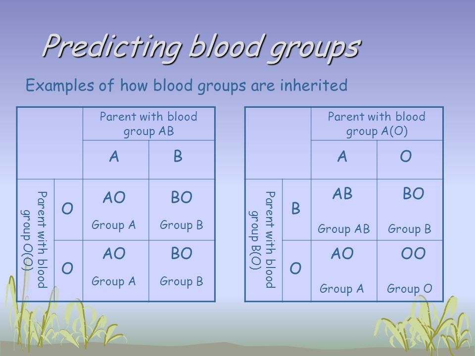 Predicting blood groups Parent with blood group AB Parent with blood group O(O) AB O AOBO O AOBO Parent with blood group A(O) Parent with blood group