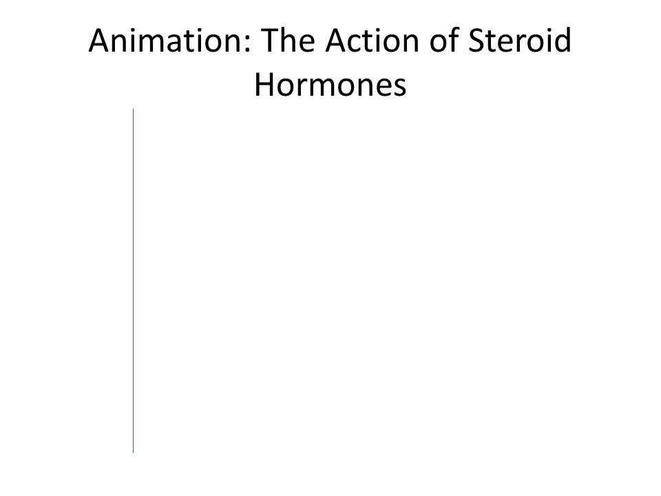 Animation: The Action of Steroid Hormones
