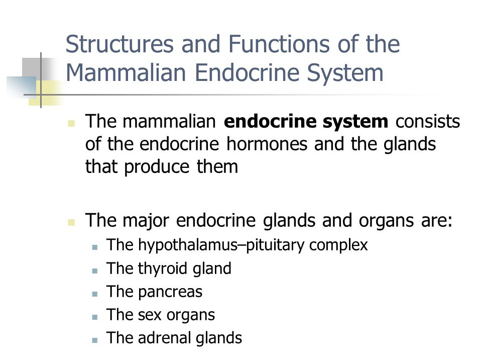 Structures and Functions of the Mammalian Endocrine System The mammalian endocrine system consists of the endocrine hormones and the glands that produ