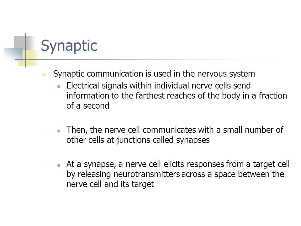 Synaptic Synaptic communication is used in the nervous system Electrical signals within individual nerve cells send information to the farthest reache