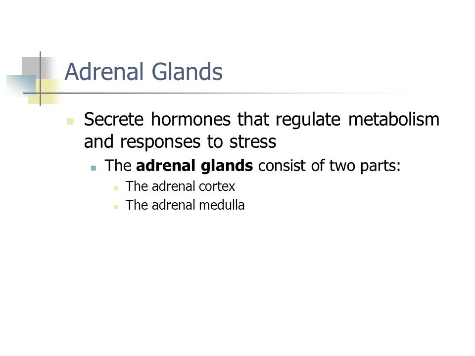 Adrenal Glands Secrete hormones that regulate metabolism and responses to stress The adrenal glands consist of two parts: The adrenal cortex The adren