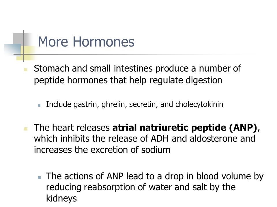 More Hormones Stomach and small intestines produce a number of peptide hormones that help regulate digestion Include gastrin, ghrelin, secretin, and c
