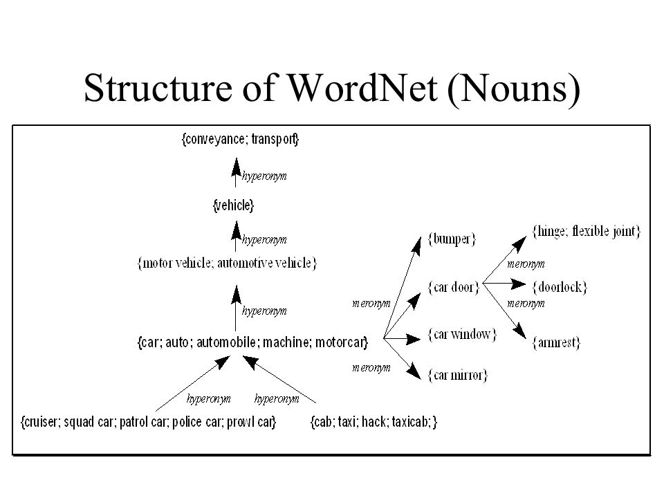Structure of WordNet (Nouns)‏