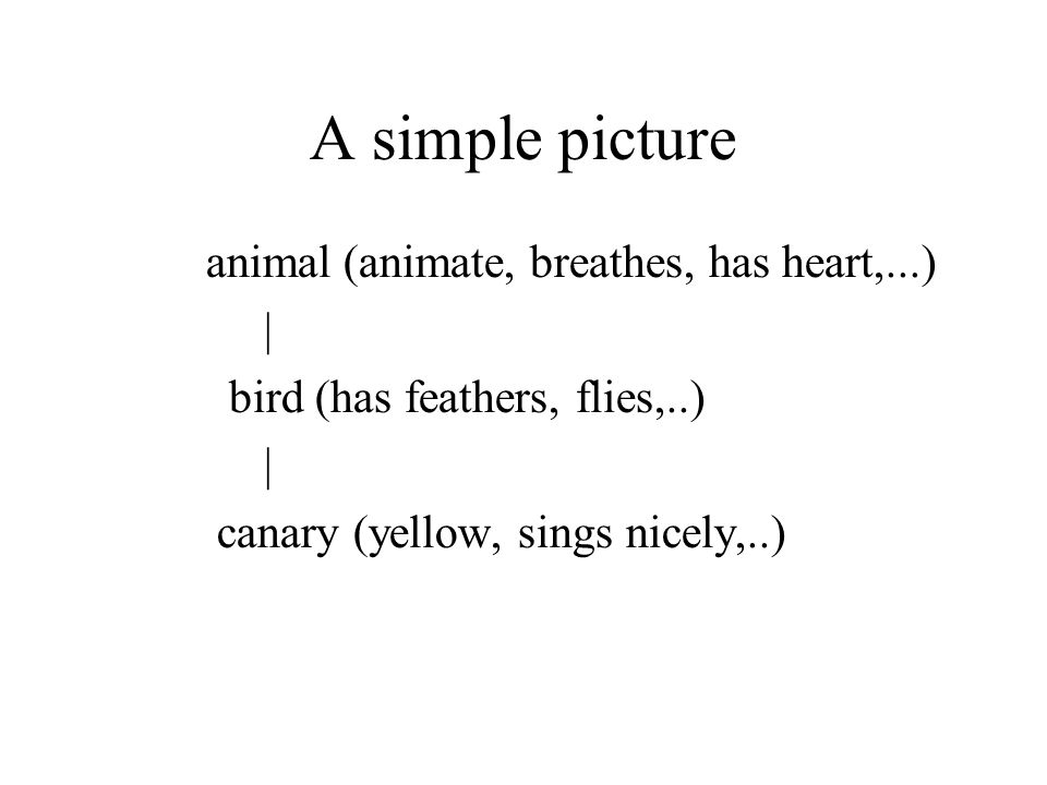 A simple picture animal (animate, breathes, has heart,...)‏ | bird (has feathers, flies,..)‏ | canary (yellow, sings nicely,..)‏