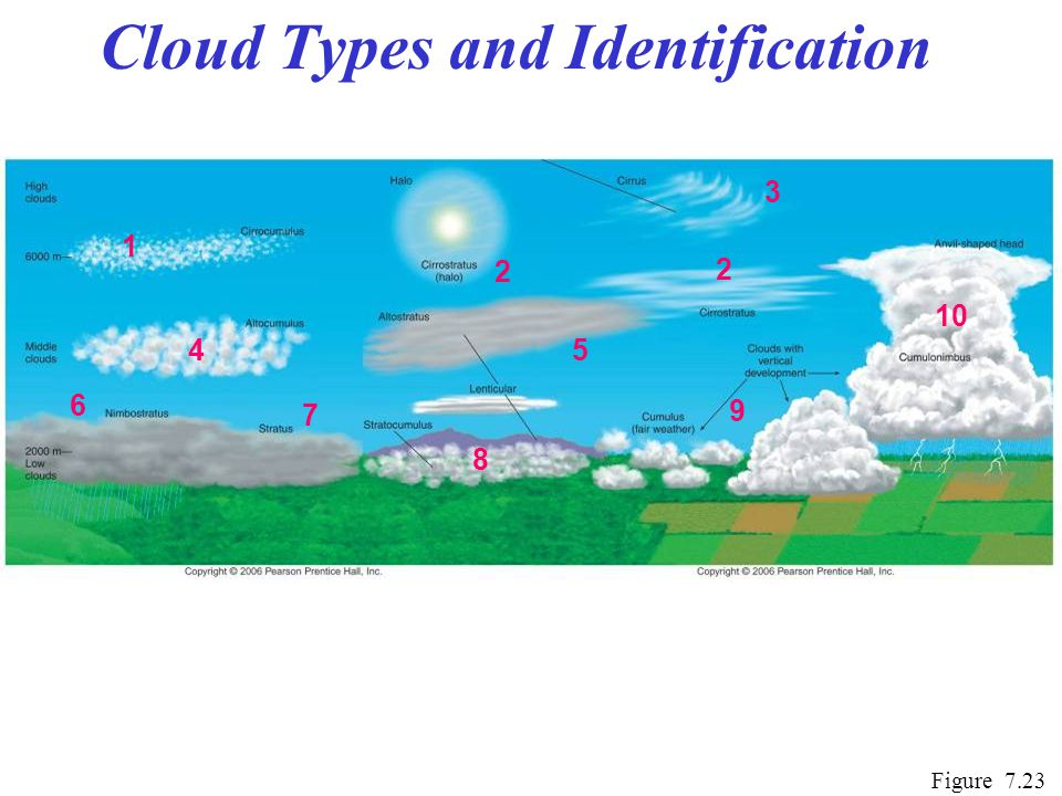 Cloud Types and Identification Figure 7.23 1 2 3 5 6 7 8 9 10 4 2