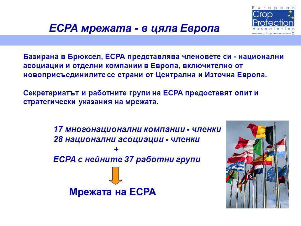 Стратегически области и цели за ECPA (1) Растителна защита и законодателство относно химикалите • Постигане на научнообоснована и отчитаща риска регулаторна рамка, която е предсказуема, пропорционална и икономически ефективна; • Избягване или минимизиране на влиянието на паралелно законодателство.