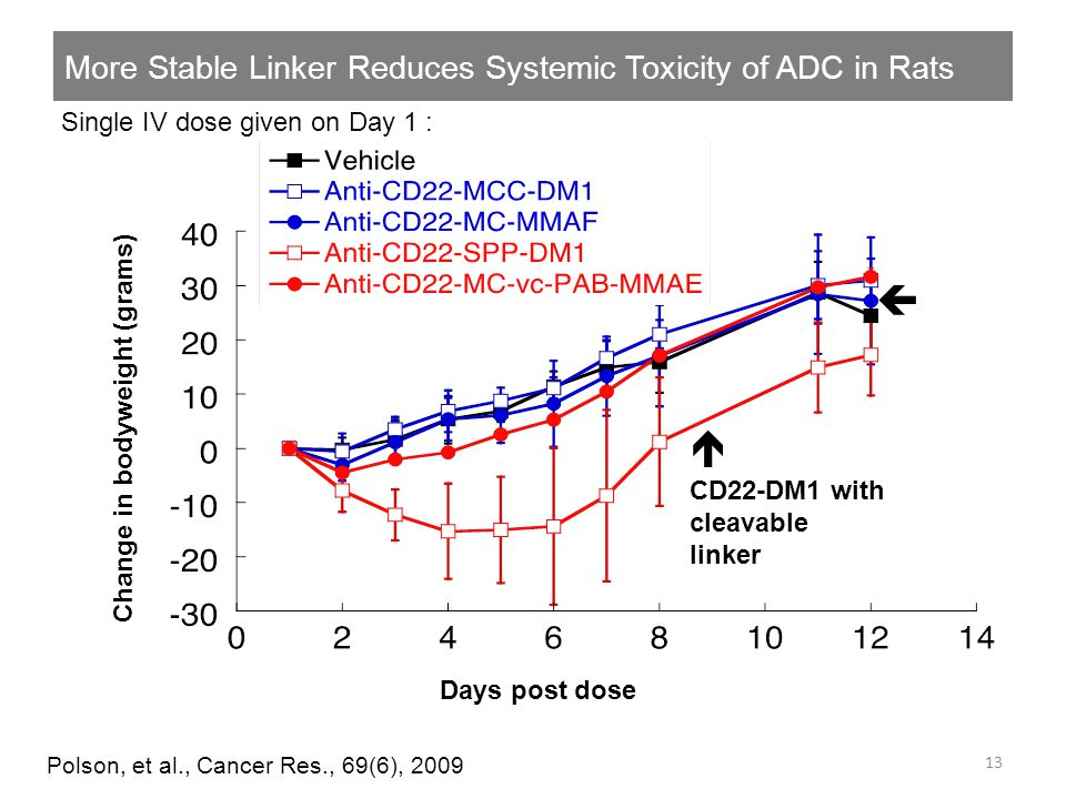 More Stable Linker Reduces Systemic Toxicity of ADC in Rats 13 Polson, et al., Cancer Res., 69(6), 2009 Change in bodyweight (grams) Days post dose Si
